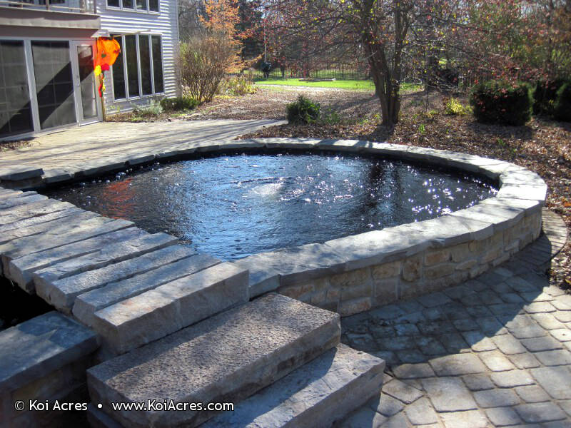 Koi pond construction for Koi pond how to